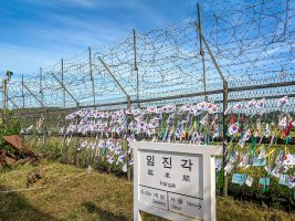 The Making of Post-Socialist Citizens in South Korea?: The Case of Border Crossers from North Korea