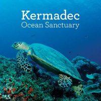 The Kermadec Ocean Sanctuary: Terraqueous Territorialization and Māori Marine Environments