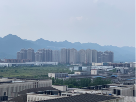 Suspension 2.0: Segregated Development, Financial Speculation, and Waiting among Resettled Peasants in Urban China